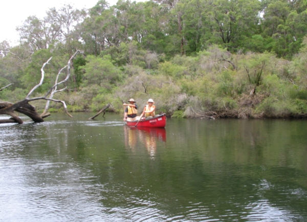 Canoe the Blackwood River